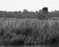 Limpenhoe Drainage Mill 1