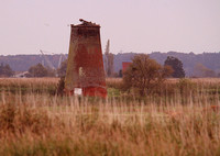 Limpenhoe Drainage Mill 2